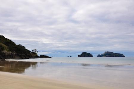 NZ_AUS_2013_425