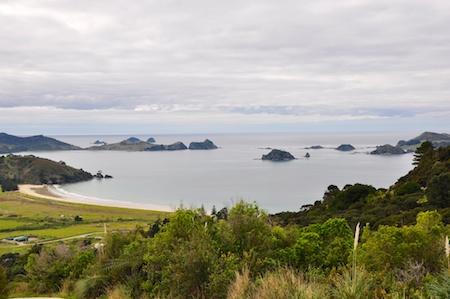 NZ_AUS_2013_429