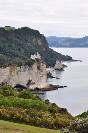 NZ_AUS_2013_508