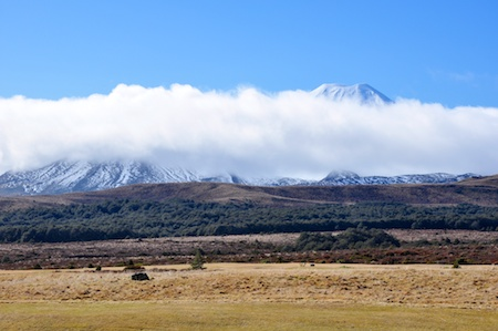 NZ_AUS_2013_884